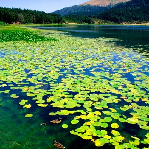 sapanca_lake